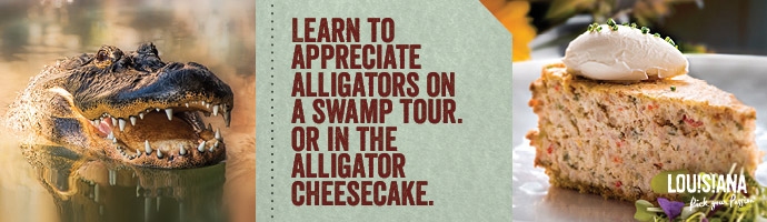 Alligator/Cheesecake