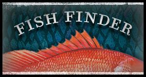 fish finder